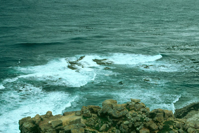 Cape Town, Cape Point, Table Mountain National Parks