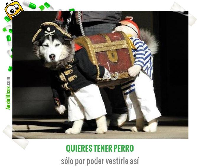 Chiste de Animales Perro Pirata
