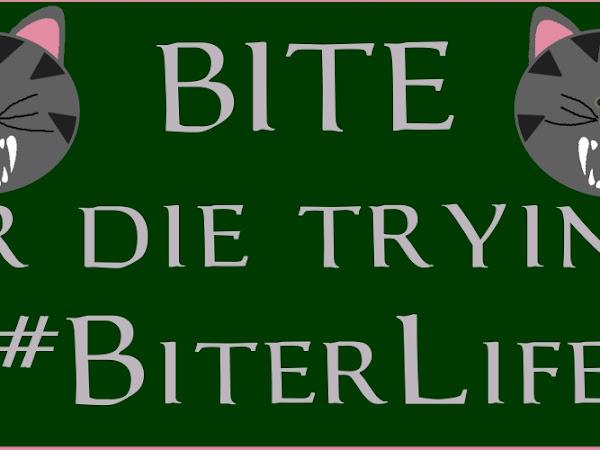 Bear's #BiterLife