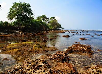 Ketika surut, Pantai Karapyak seperti aquarium alam.