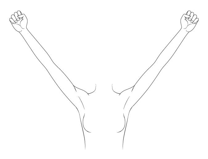 Gambar lengan anime yang diangkat