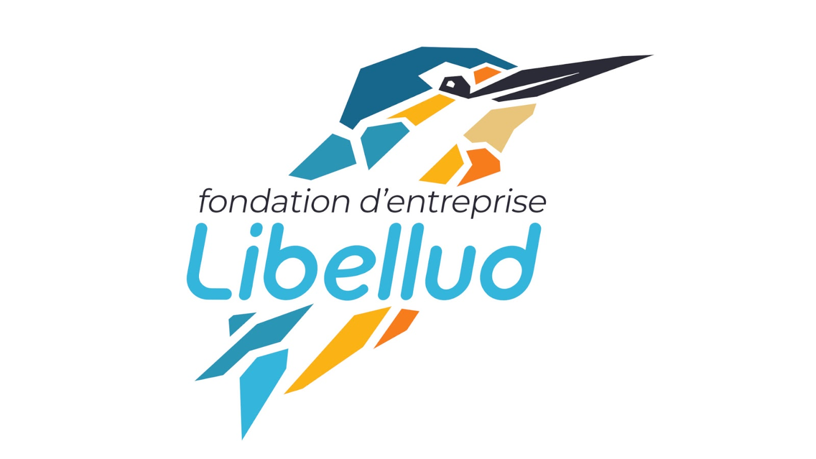Board Game News Collider Lebellud Launches Creative Support Foundation with 1 Million Euros
