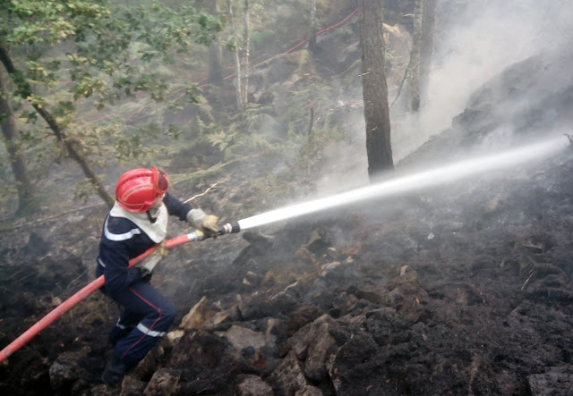 Incendie dans les carrières de la forêt de Fontainebleau