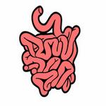 small intestine in spanish