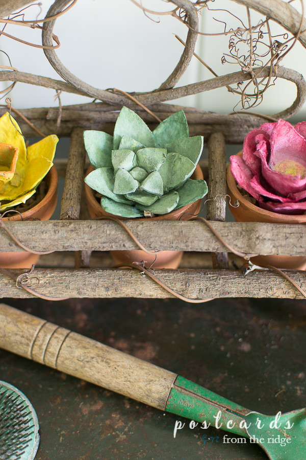 colorful flowers and succulent made from paper egg cartons