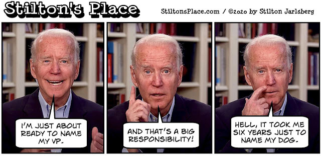 stilton's place, stilton, political, humor, conservative, cartoons, jokes, biden, vp, kamala harris, cameltoe hope n' change, biden, vp, kamala harris, cameltoe