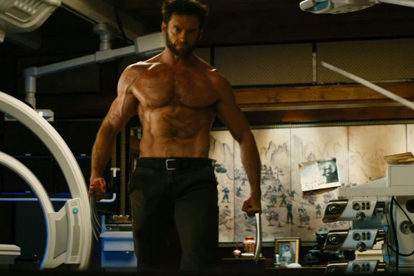 The Wolverine 2013: New Movies Collections