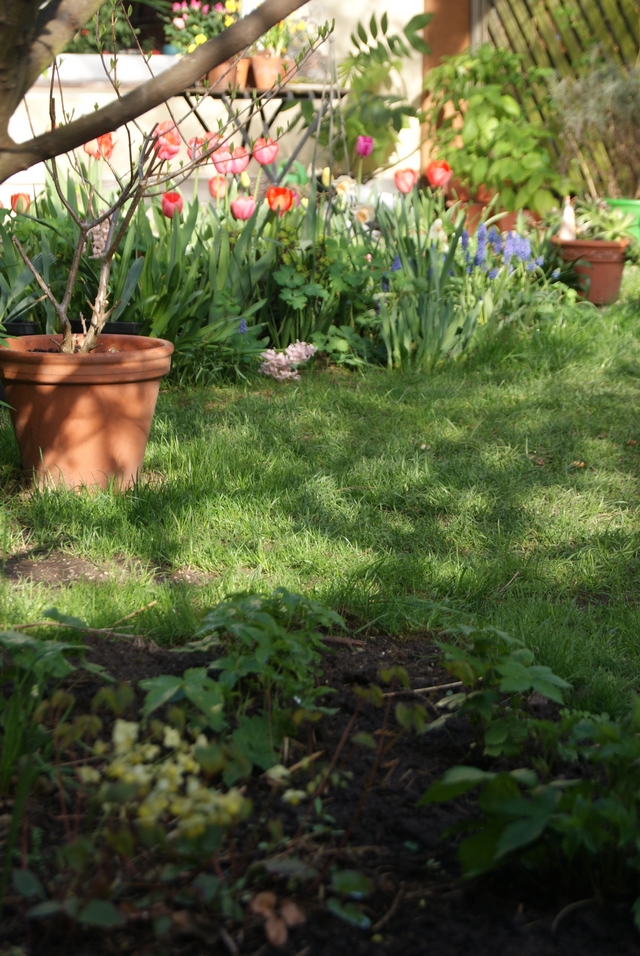 Blick ins Beet im Aprilgarten