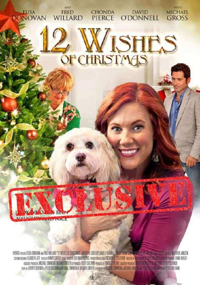 12 სურვილი საშობაოდ / 12 Wishes of Christmas 2011 (online)