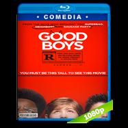 Chicos buenos (2019) HD BDREMUX 1080p Latino