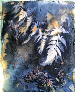 Sue Reno_wet cyanotype_Image 857