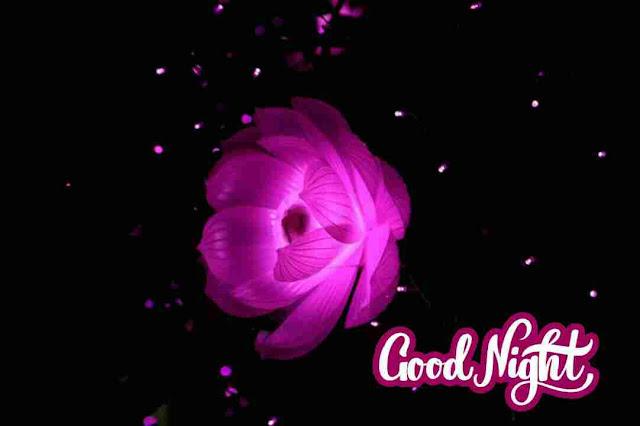 Good Night Image , photo , greetings