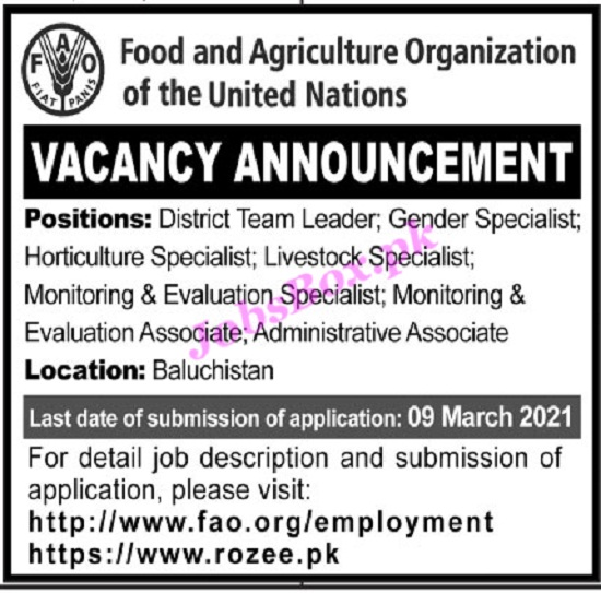food-agriculture-organization-of-united-nations-fao-jobs-2021-apply-online