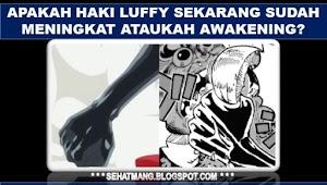 Apakah Haki Luffy Sekarang Sudah Meningkat ataukah Awakening?