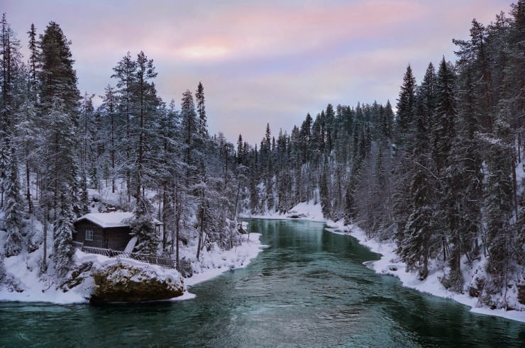 Go Skiing in Oulanka National Park in Finland
