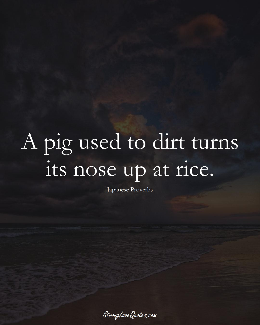 A pig used to dirt turns its nose up at rice. (Japanese Sayings);  #AsianSayings