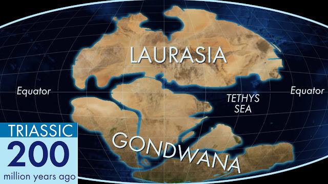 تشكل قارتي غندوانا و لوراسيا بعد انقسام قارة بانجيا