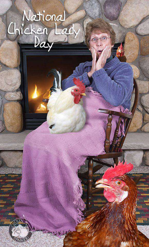 National Chicken Lady Day Wishes pics free download