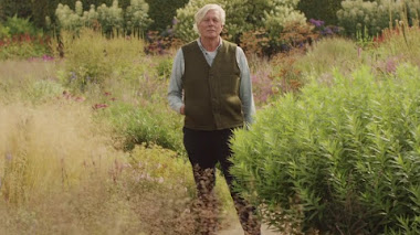 Into the Wild: Piet Oudolf en Hummelo