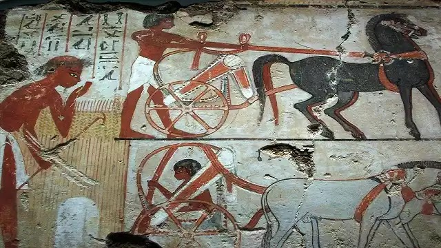 Ancient Egyptian Horse