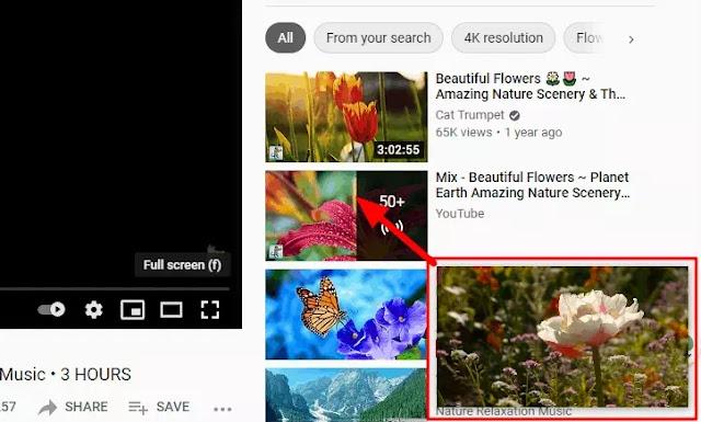 Cara Mengaktifkan Mode Picture in Picture Browser Microsoft Edge-2