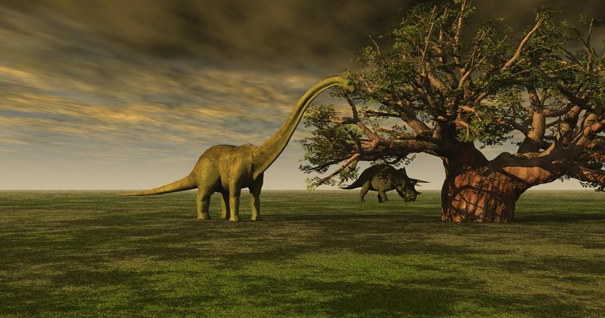 Nuevo estudio plantea que el árbol genealógico de los dinosaurios está equivocado