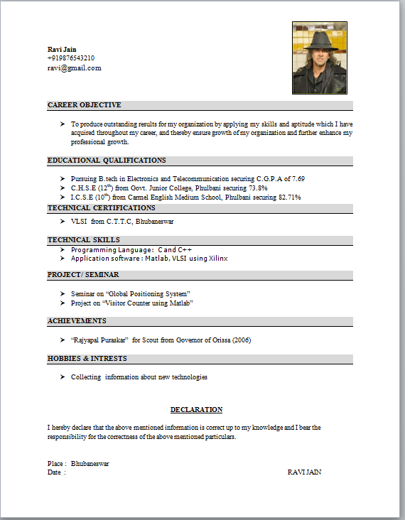 format resume - Standard Resume Format Download