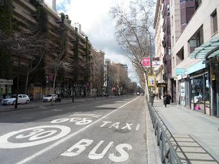 Ärboles en las acera y en el centro de la calle, vestigio del antiguo bulevar.
