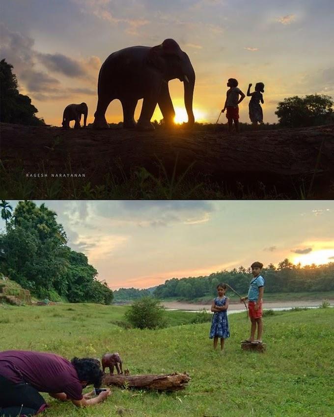Oyuncak hayvanlar ile fotoğraf çekmek