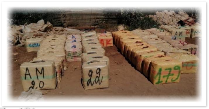 حجر 3 أطنان من المخدرات داخل ضيعة فلاحية