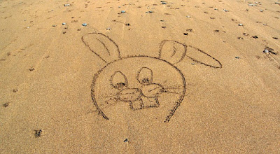 Rabbit Drawn in the Sand