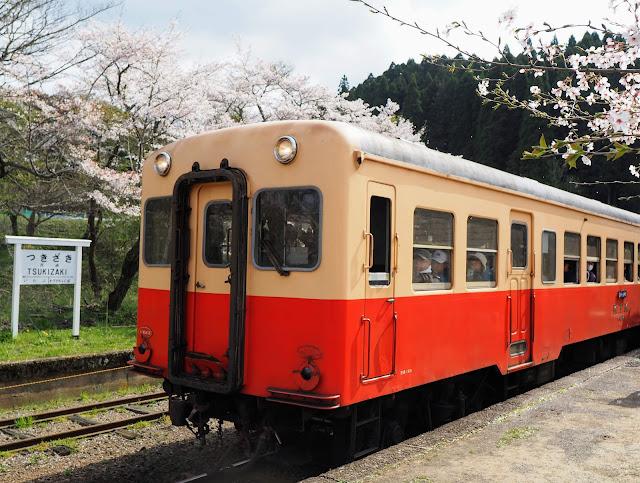 小湊鐵道 月崎駅 桜