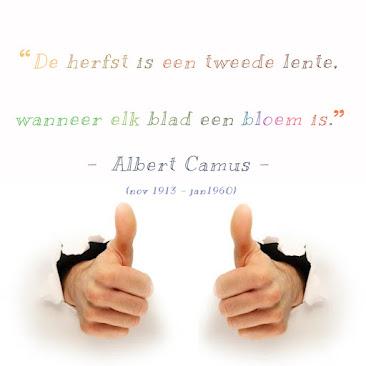www: wijze woorden v/d week