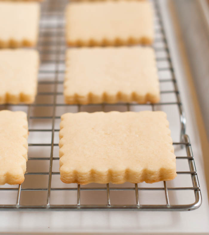 how to freeze cut-out cookies
