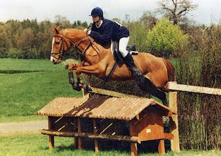 Aoife horse jumping