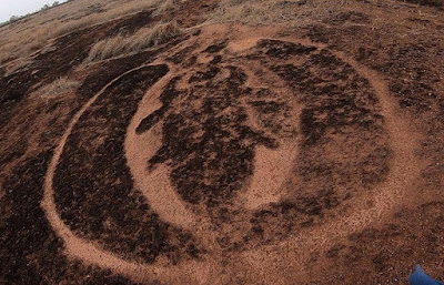 Petroglyph in Ratnagiri, Maharashtra, India, depicting the Winged Scarab
