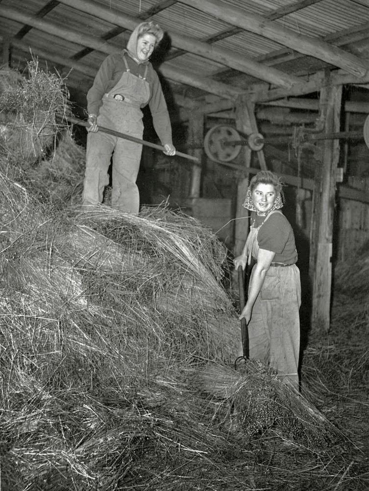 Vintage Photos Of Land Girls During World War Ii Vintage