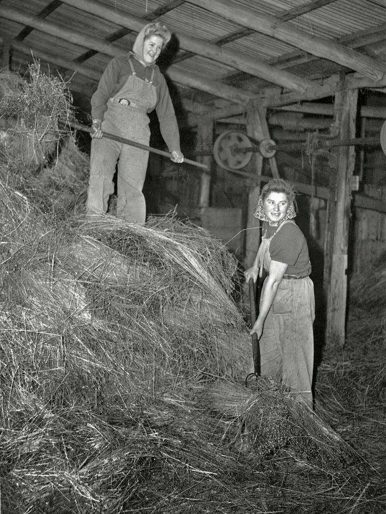 Vintage Photos of Land Girls During World War II  vintage everyday