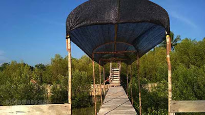 mempawah mangrove park desa pasir