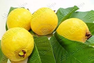 طريقة حفظ وتخزين الجوافة وعمل أحلى عصير جوافة خطوة بخطوة بالصور