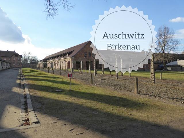 La visita ad Auschwitz - Birkenau