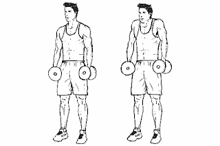7. Dumbbell Shrug