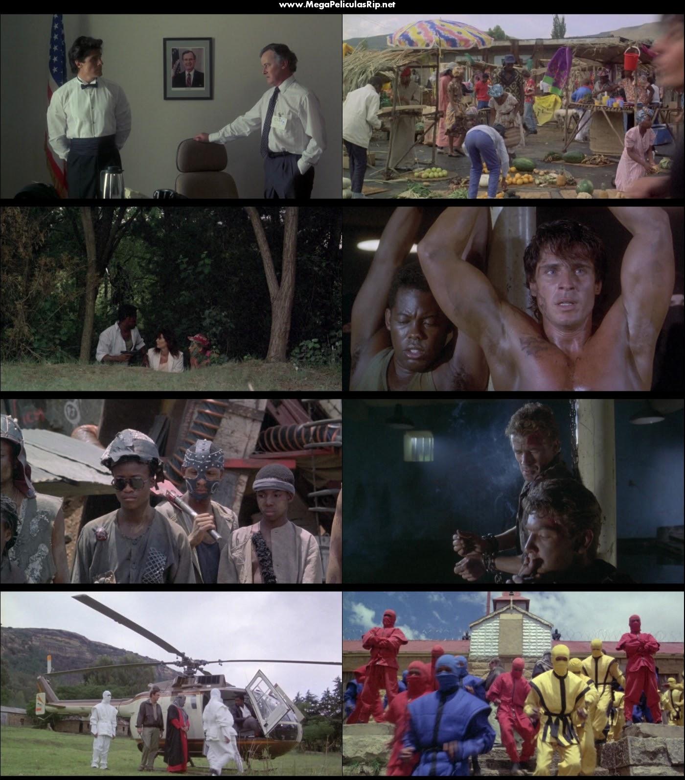 Ninja Americano 4 1080p Latino