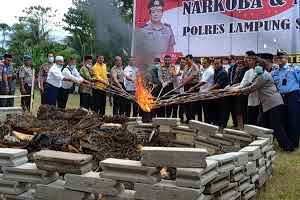Kapoda Lampung,Irjen.Purwadi Arianto,Saksikan Pemusnahan Barang Bukti.