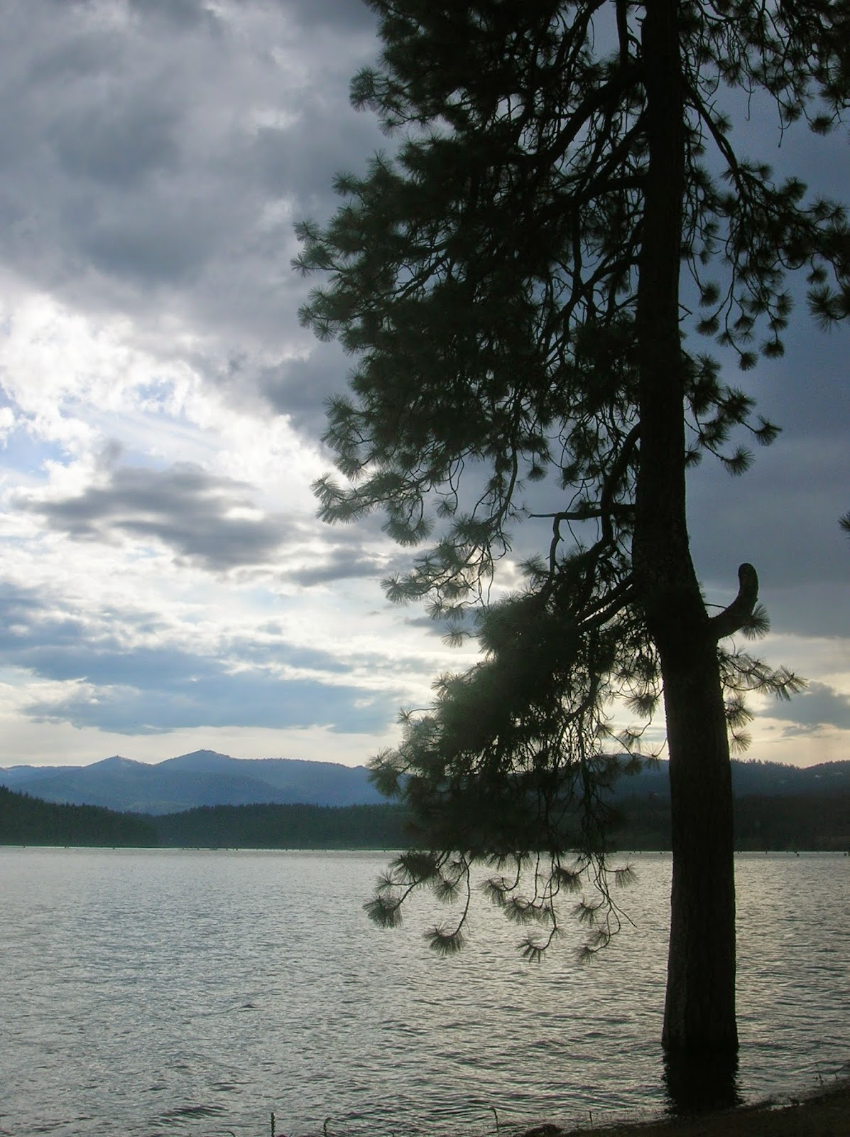 Lake Cour D'Alene for a babymoon