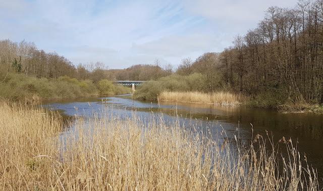Küsten-Spaziergänge rund um Kiel, Teil 4: Entlang am Ufer der Schwentine. Traumhafter Blick von der Fußgänger- zur Eisenbahnbrücke.