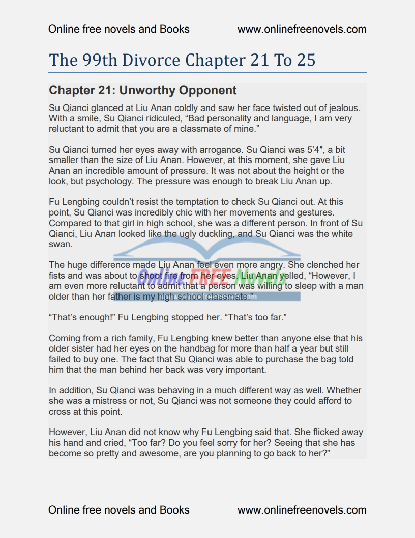 The 99th Divorce Chapter 21 To 25 PDF