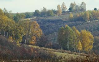 http://fotobabij.blogspot.com/2015/11/roztocznskie-wzgorza-jesienia.html