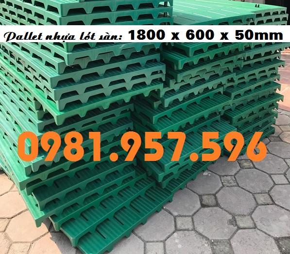Pallet nhựa 1800 x 600 x 50mm, pallet nhựa lót sàn, pallet nhựa kê hàng
