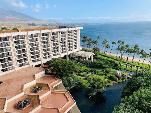 How to find cheapest date for Hyatt hotels